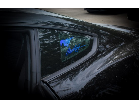 Mustang Side Window Panels 2015 to 2018